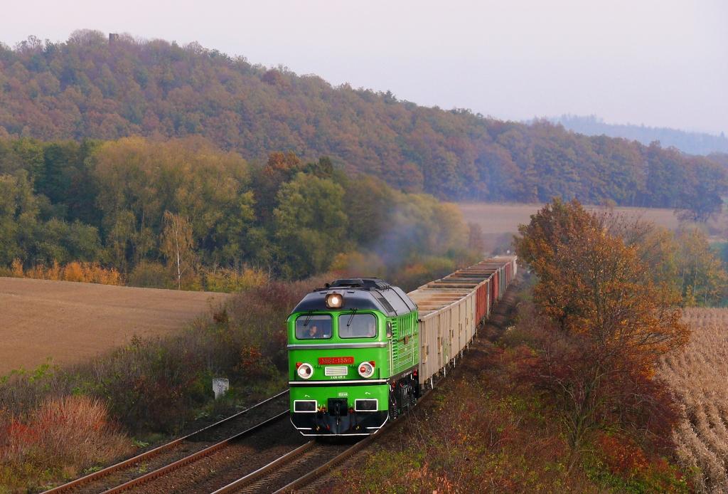 Lokomotiva M62-1556, TMS 164029 (Pabianice – Ścinawka Średnia), Gorzuchów Kłodzki – Ścinawka Średnia (Ścinawka Dolna), 22.10.2019 16:39 - Trainweb