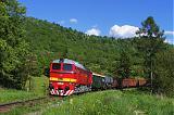 Lokomotiva 781 168-0, zvl. požární vlak  (Vrútky – Turčianske Teplice – Banská Bystrica – Zvolen – Kremnica – Vrútky), Kremnica – Kremnické Bane, 28.5.2010 16:45 - Trainweb